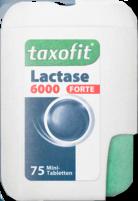 Taxofit_6.000