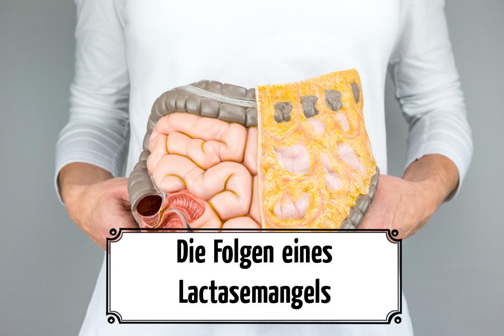 Die Folgen eines Lactasemangels